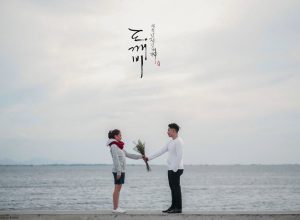 korean drama inspired prenup